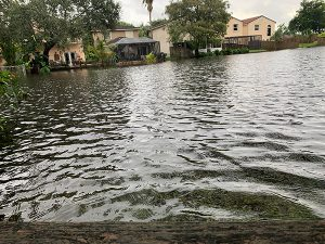 Flood Control Pumps Aid Florida in Hurricane Eta Relief